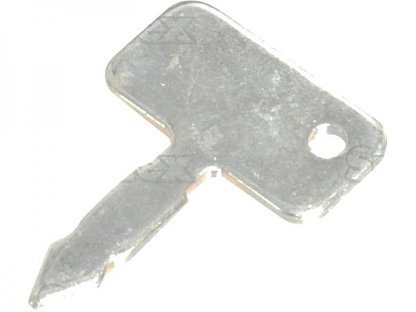 Massey Ferguson Zündschlüssel (3813361M1)
